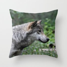 Grey Wolf Stare Throw Pillow