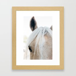 Horse I Framed Art Print