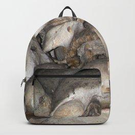 Sedlec VIII Backpack