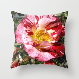 Spattered Throw Pillow