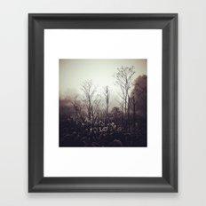 Morning Meditation Framed Art Print