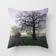 evening light... Throw Pillow