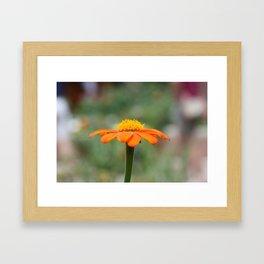 Orange Cone Framed Art Print