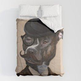 Murphy of Cork Comforters
