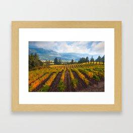Autumn Vineyard Vista Framed Art Print