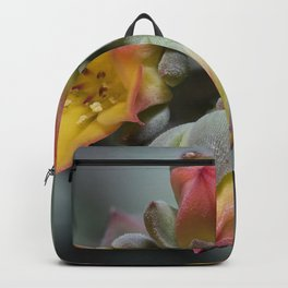 Succulent Blossom Backpack
