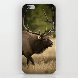 Bull Elk Along The Madison River iPhone Skin