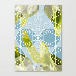 banana sky Canvas Print