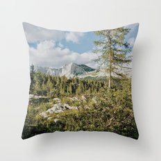 Afternoon in the mountains Throw Pillow