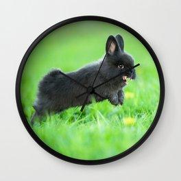 Killer Bunny Wall Clock