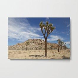 Desert Landcape 3 Metal Print