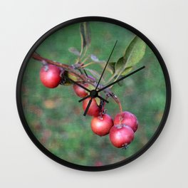 Crabapples into the wild Wall Clock