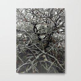 Frozen Veins Metal Print