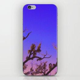 Warm Nights iPhone Skin