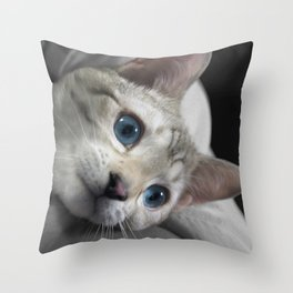 The Blue Ice in the Snow Bengal Cat's Eyes Throw Pillow
