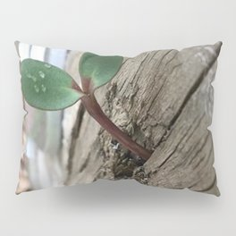 Plant sprout gate Pillow Sham