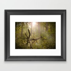 Magical Appalachia Framed Art Print