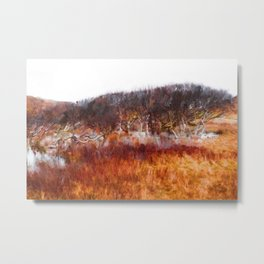 Norderney - Birches in the water hole Metal Print