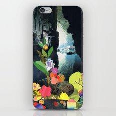 Cave Garden IV iPhone & iPod Skin