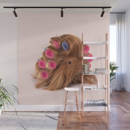 CURLY GUINEA PIG Wall Mural