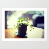 A Pot of Green Art Print