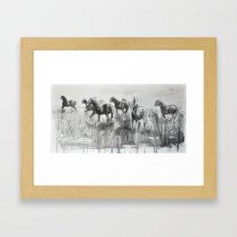 Equine Life 2 Framed Art Print