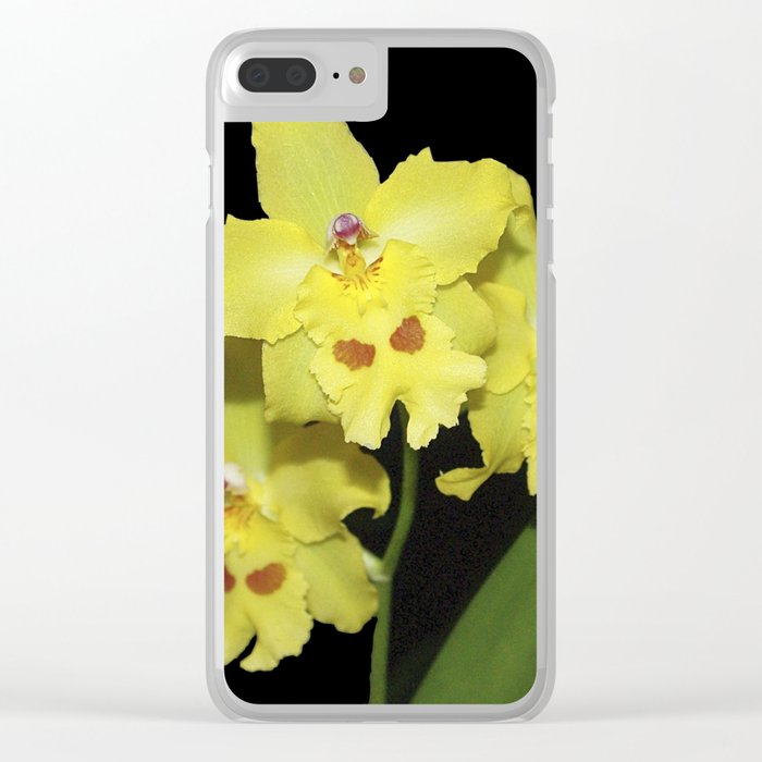 Glorious Golden Orchid - Odontonia Yellow Parade Alpine Clear iPhone Case