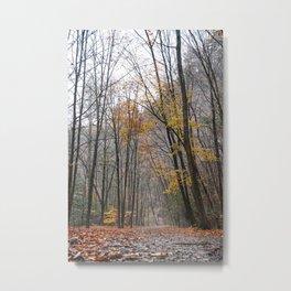 Art Listing - River Walk on a Foggy Autumn Day Metal Print