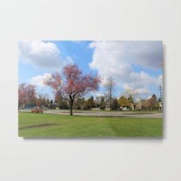 beautiful Holly park in Surrey, BC, Canada.  Metal Print