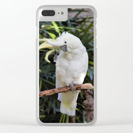 Sulfur-Crested Cockatoo Salutes the Photographer Clear iPhone Case