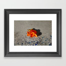 Flower shadow Framed Art Print