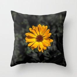 Selective Colour Throw Pillow