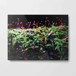Sparkle Spores Metal Print