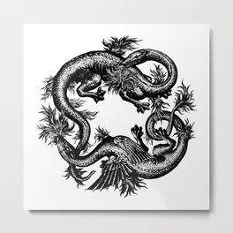 Salamander and Dragon Metal Print