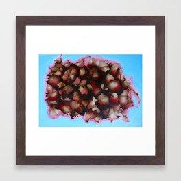 Burst I Framed Art Print