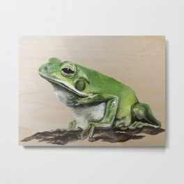 The Green Tree Frog Metal Print
