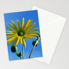 Montrose Flower in the Sky Stationery Cards