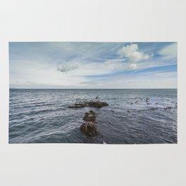 Irish bay and flying seagulls Rug