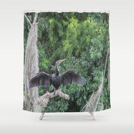 A Sunning Anhinga Shower Curtain