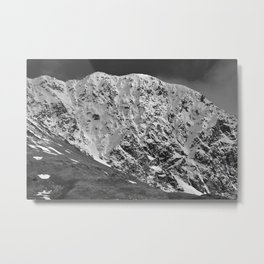 Fresh Snow in Portage Valley, Alaska - B & W Metal Print