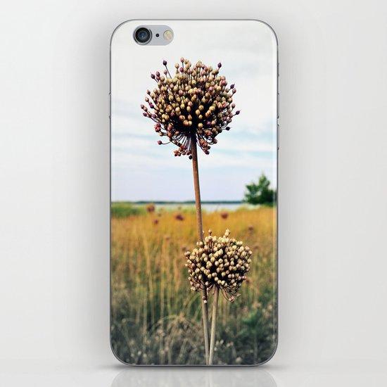 "Yorktown ""Onion"" iPhone & iPod Skin"