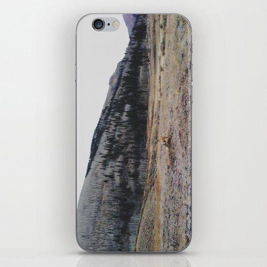 Silverton Fox iPhone & iPod Skin