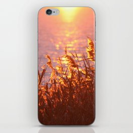 Lake sunset iPhone Skin