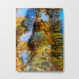 Lichen on Birch Metal Print