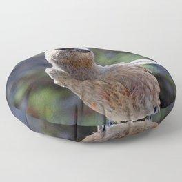 Watercolor Bird, Endangered Brown-capped Rosy Finch 04, Rockcut, RMNP, Colorado Floor Pillow