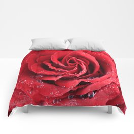 Red Swirl Rose Comforters