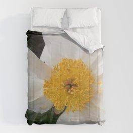 White Beauty by Teresa Thompson Comforters