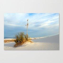 White Sands Evening Canvas Print