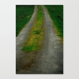 Unknown Canvas Print