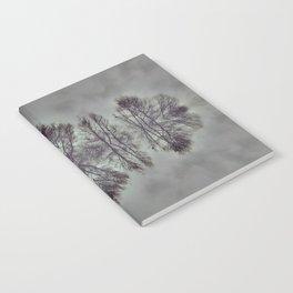Treeflection I Notebook